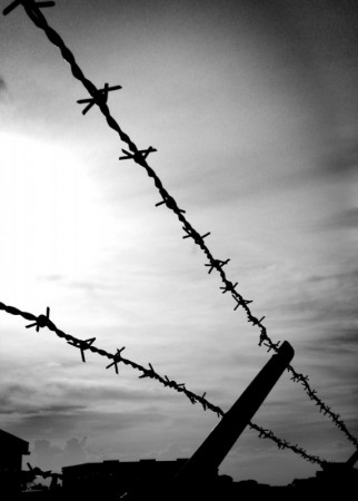 BUILD BARBED WIRE FENCE | HOW TO MAKE FENCE
