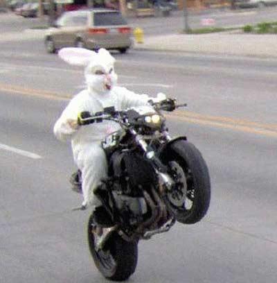 easter-bunny-motorcycle