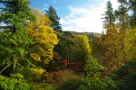 Colours, Benmore