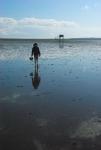 William walks the sands