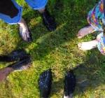 pilgrim feet
