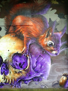 squirrel graffiti