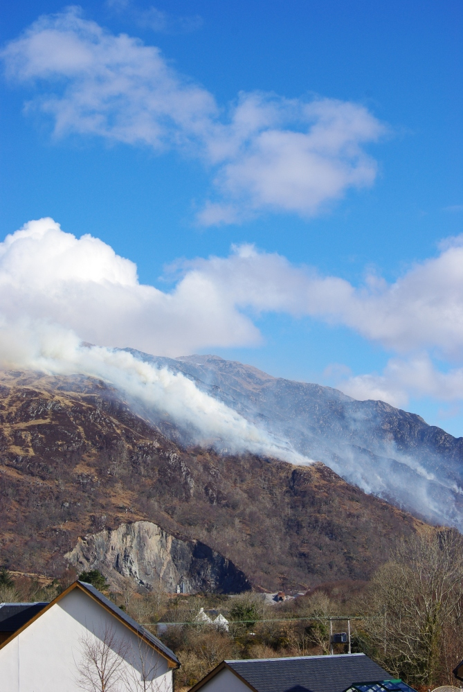 How do you put out a mountain thats on fire? (5/5)