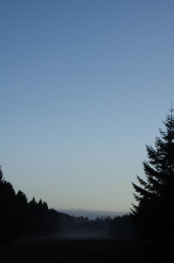 Winter Skies