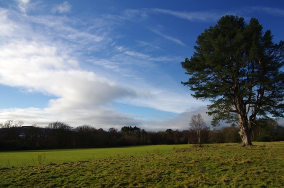cricket pitch, castle toward